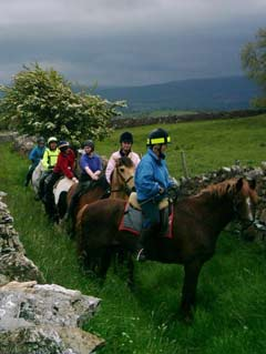 riders on a bridleway